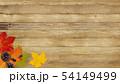 背景-秋-木目-落ち葉-どんぐり-ヴィンテージ 54149499