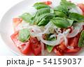 野菜サラダ 54159037
