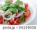 野菜サラダ 54159038