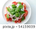 野菜サラダ 54159039