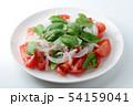 野菜サラダ 54159041