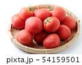 完熟トマト 54159501
