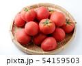 完熟トマト 54159503