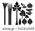 野菜_バリエーション 香味野菜セット 54161649