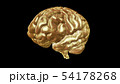 Computer model of human brain and AI 54178268