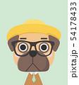 Cute pug dog. 54178433
