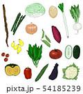 野菜 いろいろ 54185239