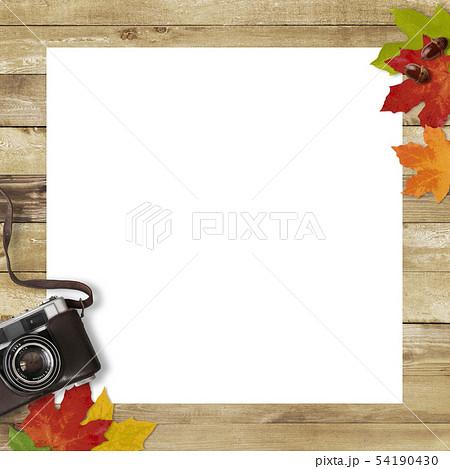 背景-木目-カメラ-落ち葉-秋-フレーム 54190430