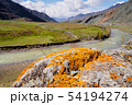unusual stone formations with colored patches of lichen and moss on the background of mountains and 54194274
