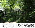 新宿区立 おとめ山公園 54195059