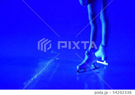 フィギュアスケート 54202336