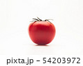 Red big fresh tomato on a white background 54203972