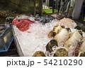 鮮魚 54210290