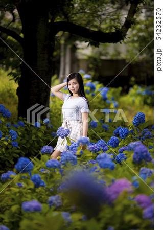 兵庫県西宮市の夙川公園の紫陽花を背景にしている黒髪ロングヘアーの若い女性 54232570
