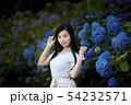 兵庫県西宮市の夙川公園の紫陽花を背景にしている黒髪ロングヘアーの若い女性 54232571