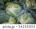 Cabbages in a market's bangkok, Thailand. 54235933