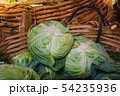 Cabbages in a market's bangkok, Thailand. 54235936