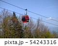 Red cable car cabin against trees and blue sky 54243316