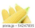トウモロコシ 4本 54247835