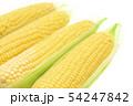 トウモロコシ 4本 54247842