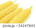 トウモロコシ 4本 54247843