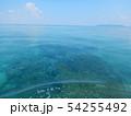 珊瑚礁 沖縄 おきなわ 海 沖縄の海 サンゴ 水中 南の島 54255492