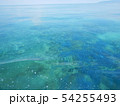 珊瑚礁 沖縄 おきなわ 海 沖縄の海 サンゴ 水中 南の島 54255493