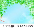 清涼感のある背景 青紅葉と金魚 54271159