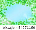 清涼感のある背景 青紅葉と金魚 54271160
