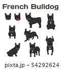 French bulldog in action,happy dog 54292624