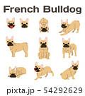 French bulldog in action,happy dog 54292629