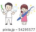 歯科医師の男性と歯科衛生士の女性 54295577