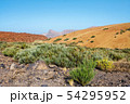 El teide volcano in the canary islands with a blue 54295952