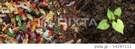 Composted Soil Cycle 54297111