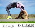 女性 ヨガ ストレッチの写真 54313685