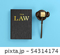 Wooden judge's gavel and law book 54314174