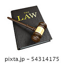 Wooden judge's gavel on law book 54314175