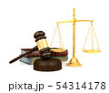 Wooden judge's gavel and golden scale and law book 54314178