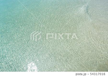 蛤浜海水浴場 54317016