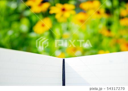 メモ帳とぼやけた黄色い花の背景 54317270