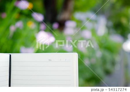メモ帳とぼやけた花の背景 54317274