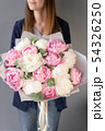 Pink and white peonies in womans hands. Beautiful peony flower for catalog or online store. Floral 54326250