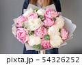 Pink and white peonies in womans hands. Beautiful peony flower for catalog or online store. Floral 54326252