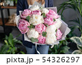 Pink and white peonies in womans hands. Beautiful peony flower for catalog or online store. Floral 54326297