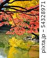 日比谷公園の秋 54328971