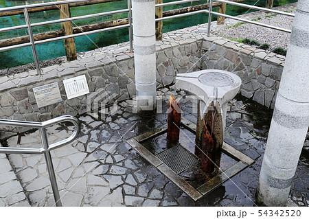 丸池湧水(日本名水百選)の水汲み場 54342520