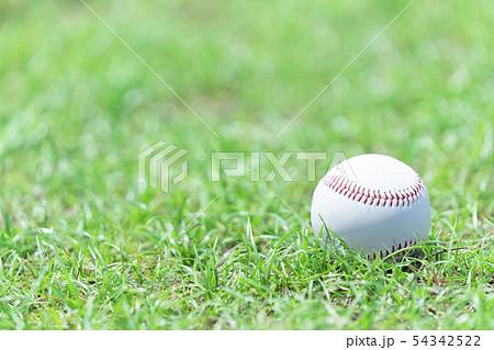野球イメージ ボール 54342522