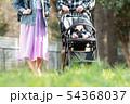 赤ちゃんとベビーカーでお出かけする家族 公園 散歩 子育て 54368037