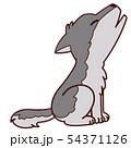 動物のイラスト-オオカミ 54371126