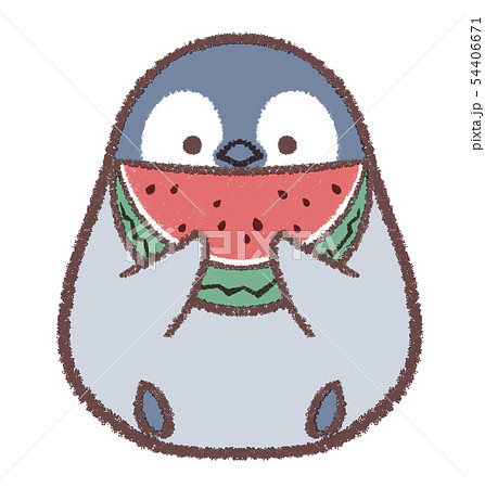 ペンギンヒナスイカのイラスト素材